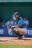 Anthony Priester (19) during the WWBA World Championship at Terry Park on October 8, 2020 in Fort Myers, Florida.  Anthony Priester, a resident of Denham Springs, Louisiana who attends Live Oak High School, is committed to Meridian Community College.  (Mike Janes/Four Seam Images)