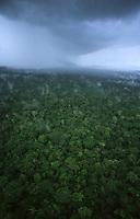 chuva na floresta amazônica - Rondônia