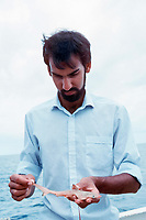 biologist holds embryo of great hammerhead shark, Sphyrna mokarran, Bahamas, Caribbean Sea, Atlantic Ocean
