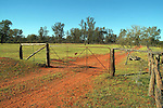 The Farm Gate. Back of Bourke NSW
