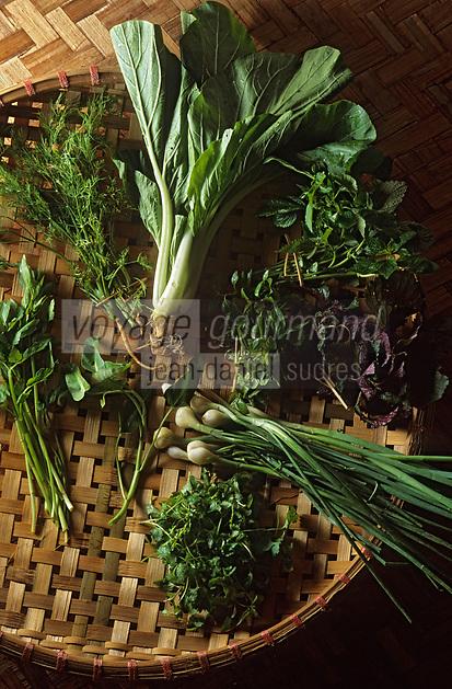 Asie/Vietnam/Hanoi: le marché - détail des herbes aromatiques de la cuisine vietnamienne - coriandre, menthe, périlla, petits oignons