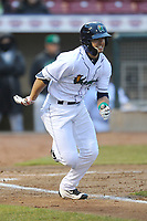Cedar Rapids Kernels designated hitter Mark Contreras (1) in action against the Clinton LumberKings at Veterans Memorial Stadium on April 13, 2018 in Cedar Rapids, Iowa. Clinton won 2-0.  (Dennis Hubbard/Four Seam Images)