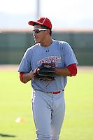 Ismael Guillon - Cincinnati Reds - 2010 Instructional League.Photo by:  Bill Mitchell/Four Seam Images..