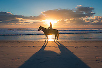 Horseback riding on the beach of Amelia Island, Florida.