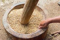 Thailand, Mae Hong Son. Baan Phaem Bok Village. Woman winnowing rice.