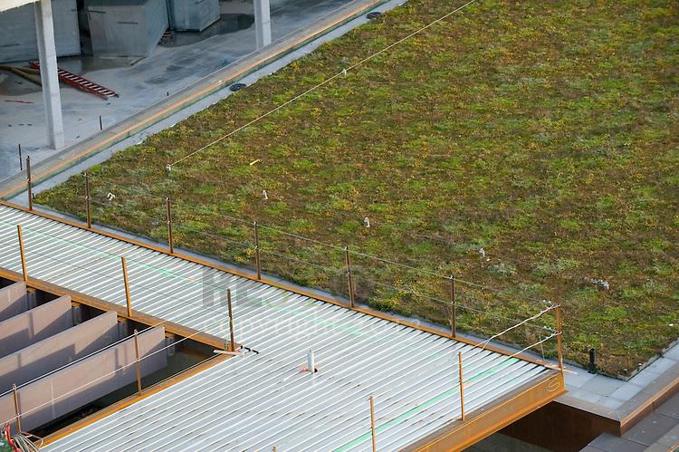 Green Rooftop in Seattle