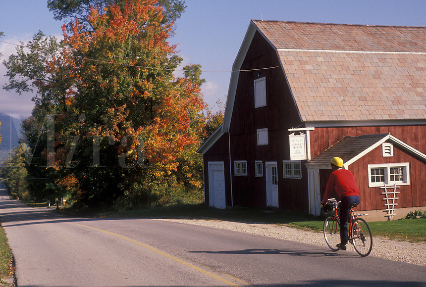 AJ4505, biking, barn, fall, Vermont, A man bikes along a country road past a red barn during the fall in Chiselville in Bennington County in the state of Vermont.