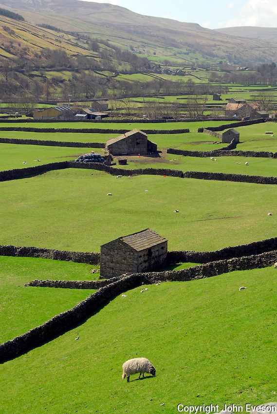 Stone barns near Gunnerside, North Yorkshire.