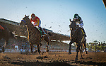 ARCADIA, CA - FEBRUARY 06: Hoppertunity #5 and Flavian Prat battle for position with Hard Aces #4 and Joe Talamo during the running of the San Antonio Stakes at Santa Anita Park on February 06, 2016 in Arcadia, California. (Photo by Alex Evers/Eclipse Sportswire/Getty Images)