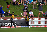 Logan Van Beek celebrates his diving catch on the boundary during the men's Dream11 Super Smash cricket match between the Wellington Firebirds and Northern Knights at Basin Reserve in Wellington, New Zealand on Saturday, 9 January 2021. Photo: Dave Lintott / lintottphoto.co.nz