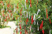 """Festival International des Jardins de Chaumont-sur-Loire, thème de lannée 2010, Jardins corps et âmes : jardin """"L'arbre à prières"""" par First Republick & Claire Michaud. (Mention obligatoire  Festival des Jardin de Chaumont-sur-Loire et des créateurs des jardins et pas d'usage publicitaire sans autorisation préalable) // Festival International des Jardins de Chaumont-sur-Loire, theme of the year 2010, """"Jardins corps et âmes"""" : garden """"L'arbre à prières"""" by First Republick & Claire Michaud (the artistes Must Be Credited and the Festival International des Jardins de Chaumont-sur-Loire)"""