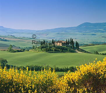 Italy, Tuscany, near San Quirico d'Orcia: Tuscan Countryside   Italien, Toskana, bei San Quirico d'Orcia: typisch toskanische Landschaft