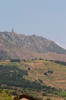 Vineyard. Madeloc hilltop tower. Banyuls sur Mer, Roussillon, France