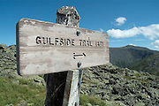 Appalachian Trail- Mount Washington from Gulfside Trail during the summer months in the scenic landscape of the White Mountains, New Hampshire USA
