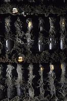 Europe/Hongrie/Tokay/Tolsva: Cave du Kombinat - Cave de Constantine - Vieilles bouteilles de Tokay ou Tokaj