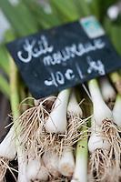 Europe/France/Bretagne/56/Morbihan/ Belle-Ile-en-Mer/Le Palais: Ail nouveau  de Baptiste et Amandine Vasseur sur le marché