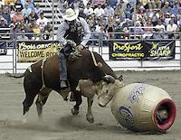 Bull Riding Pro Rodeo