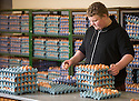 """25/03/16<br /> <br /> Zak Byra helps to count and pack eggs.<br /> <br /> Full story here:  <br /> <br /> http://www.fstoppress.com/articles/happy-hens/<br /> .<br /> FARMER Roger Hosking doesn't believe there is such a thing as a bad egg, especially when he's talking about youngsters who have already made some bad choices in life.<br /> <br /> So it seems particularly fitting that this Easter, traditionally a time to celebrate new beginnings, he will spend time with disadvantaged kids, counting and grading more than 20,000 eggs each day as part of his unique """"farm school"""" philosophy.<br /> <br />  <br />  <br /> <br /> All Rights Reserved: F Stop Press Ltd. +44(0)1335 418365   www.fstoppress.com."""