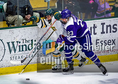 2 February 2020: University of Vermont Catamount Forward Kristina Shanahan, a Junior from Ste-Anne-de-Bellevue, Québec, is pushed into the boards by Holy Cross Crusader Defender Antonia Matzka, a Junior from Moedling, Austria, in third period action at Gutterson Fieldhouse in Burlington, Vermont. The Lady Cats rallied in the 3rd period to tie the Crusaders 2-2 in NCAA Women's Hockey East play. Mandatory Credit: Ed Wolfstein Photo *** RAW (NEF) Image File Available ***
