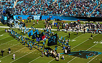 Photography of the Carolina Panthers vs. The Baltimore Ravens, at Bank of America Stadium in Charlotte, North Carolina.<br /> <br /> Charlotte Photographer - PatrickSchneiderPhoto.com