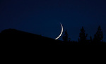 The moon sets near Hope Valley, Ca., on Monday, Nov. 16, 2020. <br /> Photo by Cathleen Allison