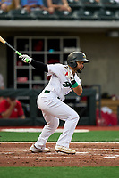 Beloit Snappers Ricky Aracena (2) bats during a game against the Peoria Chiefs on August 18, 2021 at ABC Supply Stadium in Beloit, Wisconsin.  (Mike Janes/Four Seam Images)
