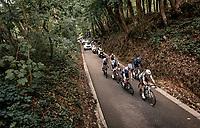 breakaway group up the Hagaard (Overijse)<br /> <br /> 60th De Brabantse Pijl 2020 - La Flèche Brabançonne (1.Pro)<br /> 1 day race from Leuven to Overijse (BEL/197km)<br /> <br /> ©kramon
