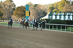 March 6, 2021: The horses coming down the back stretch during the Honeybee Stakes at Oaklawn Racing Casino Resort in Hot Springs, Arkansas. ©Justin Manning/Eclipse Sportswire/CSM