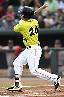 Designated hitter Jeremy Vasquez (20) of the Columbia Fireflies bats in a game against the Greenville Drive on Friday, May 25, 2018, at Spirit Communications Park in Columbia, South Carolina. Columbia won, 3-1. (Tom Priddy/Four Seam Images)