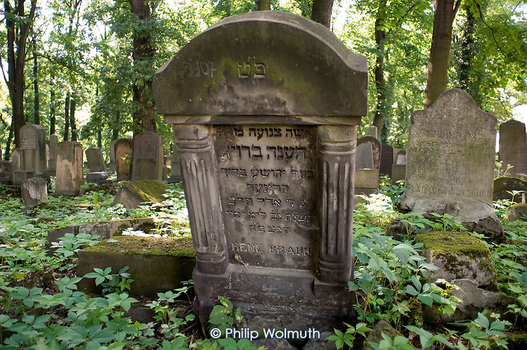 Gravestones in the nineteenth century New Cemetery in Kazimierz, the pre-Second World War Jewish district of Krakow.