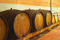 Cave P et Andre Perret in Chavannay, making Condrieu, Saint Joseph, Cote Rotie.  In the winery.  In the barrel aging cellar. Oak barrels with agining wine.   Three larger 600litre demi-muids.  Andre André P et A Perret, Chavanay, Rhone, France, Europe