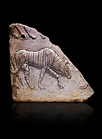Phrygian relief fragment depicting a walking animal. 8th-7th century BC . Çorum Archaeological Museum, Corum, Turkey