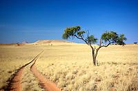 Country Road at Boesman's Place, Omaheke, Namibia