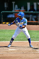 Samuel Ortiz (14) of the Ogden Raptors squares to bunt against the Helena Brewers in Pioneer League action at Lindquist Field on July 16, 2016 in Ogden, Utah. Ogden defeated Helena 5-4. (Stephen Smith/Four Seam Images)