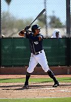 Kelvin Melean - San Diego Padres 2019 spring training (Bill Mitchell)