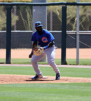 Shendrik Apostel - Chicago Cubs 2021 spring training (Bill Mitchell)