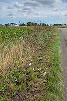 Roadside litter choppded with a grass mower