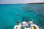 Diving in Maria la Gorda peninsula de Guanahacabibes (western point of Cuba).