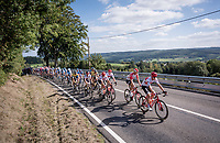 Team Trek-Segafredo setting the pace<br /> <br /> 60th Grand Prix de Wallonie 2019<br /> 1 day race from Blegny to Citadelle de Namur (BEL / 206km)<br /> <br /> ©kramon