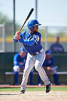 Texas Rangers Franklin Rollin (14) during an Instructional League game against the Kansas City Royals on October 4, 2016 at the Surprise Stadium Complex in Surprise, Arizona.  (Mike Janes/Four Seam Images)