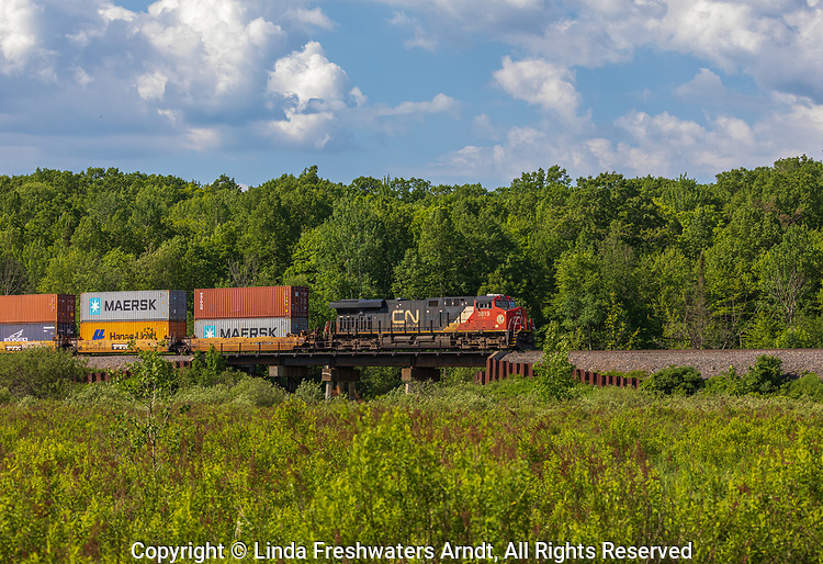 CN freight train passing through a rural community in northern Wisconsin.