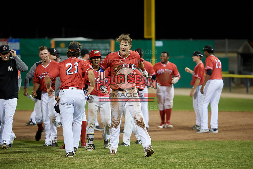 Batavia Muckdogs first baseman Sean Reynolds (25) celebrates a walk off win with his teammates after a game against the West Virginia Black Bears on July 3, 2018 at Dwyer Stadium in Batavia, New York.  Batavia defeated West Virginia 5-4.  (Mike Janes/Four Seam Images)