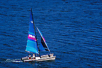 Hobie 18 catamaran sails placidly across a blue lake. boats, sailing. Utah, Deer Creek Reservoir.