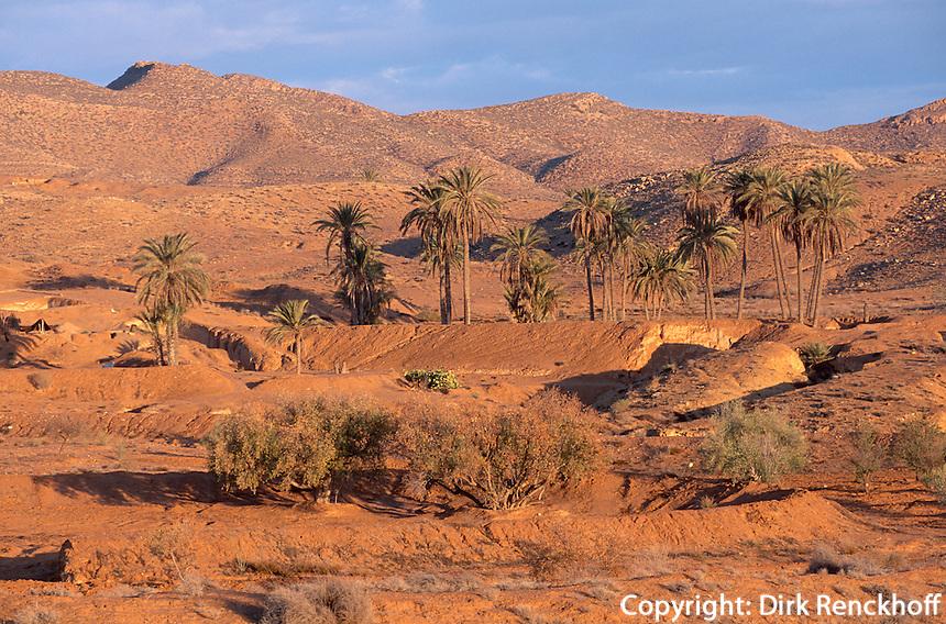 Landschaft bei  Matmata, Tunesien