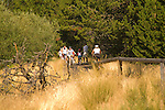 Families riding bikes on paved path, Central Oregon
