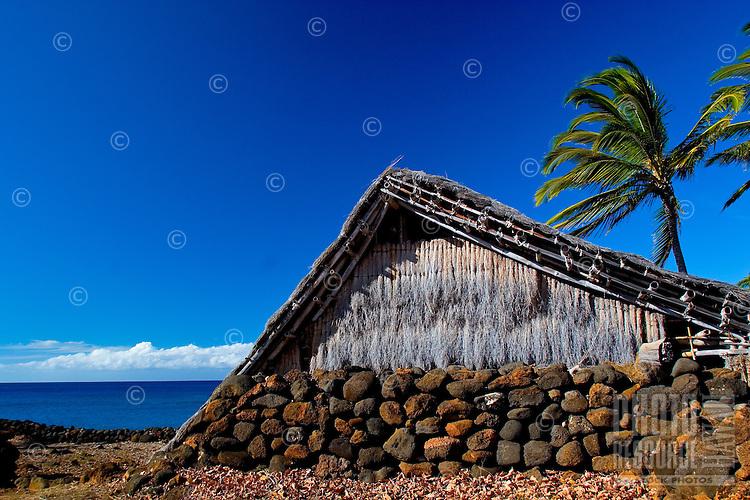 Hawaiian home replica on shoreline at ancient Hawaiian village with palms at Lapakahi State Historical Park, Big Island of Hawaii