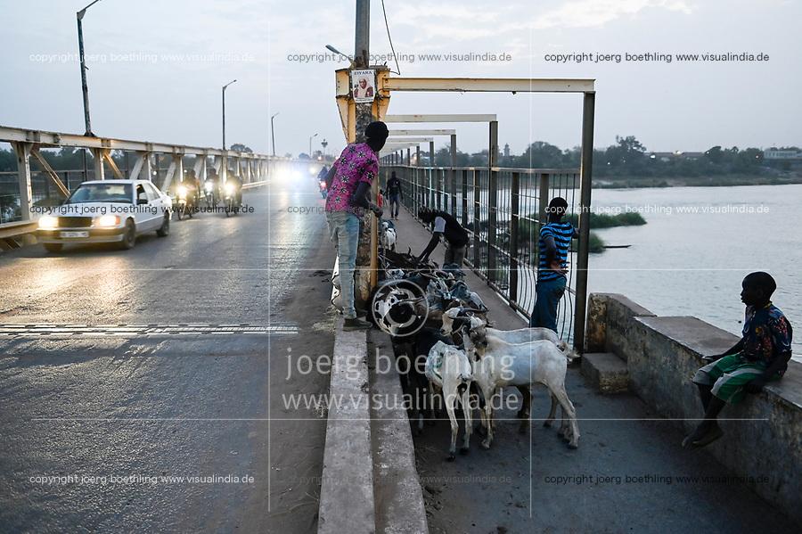 MALI, Kayes, bridge on Senegal river, cattle transport / Brücke über den Senegal Fluss