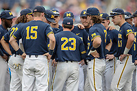 Michigan Wolverines assistant coach Nick Schnable (23) huddles with the team before Game 6 of the NCAA College World Series against the Florida State Seminoles on June 17, 2019 at TD Ameritrade Park in Omaha, Nebraska. Michigan defeated Florida State 2-0. (Andrew Woolley/Four Seam Images)