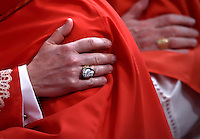 Pope Francis,during a consistory for the creation of new Cardinals at St. Peter's Basilica in Vatican.February 14, 2015