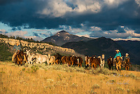 Western Cowboy and Cowgirl photos, Fine Art Limited Edition Photography Of American Cowboys and Cowgirls by Jess Lee